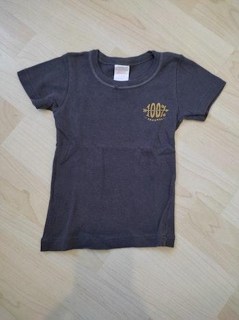 Tee shirt garçon 2 ans absorba