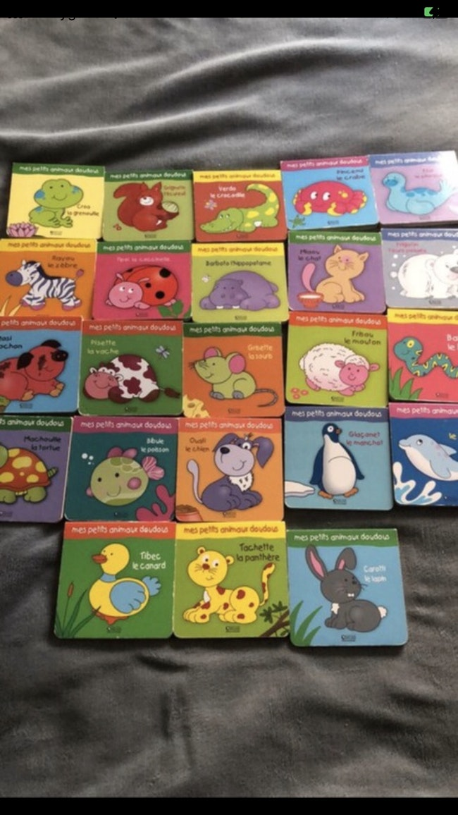 Lot livres animaux doudous