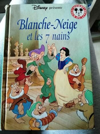 """Livre """"Blanche-neige et les 7 nains"""""""