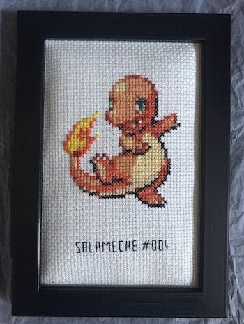 Cadre Salamèche Pokémon