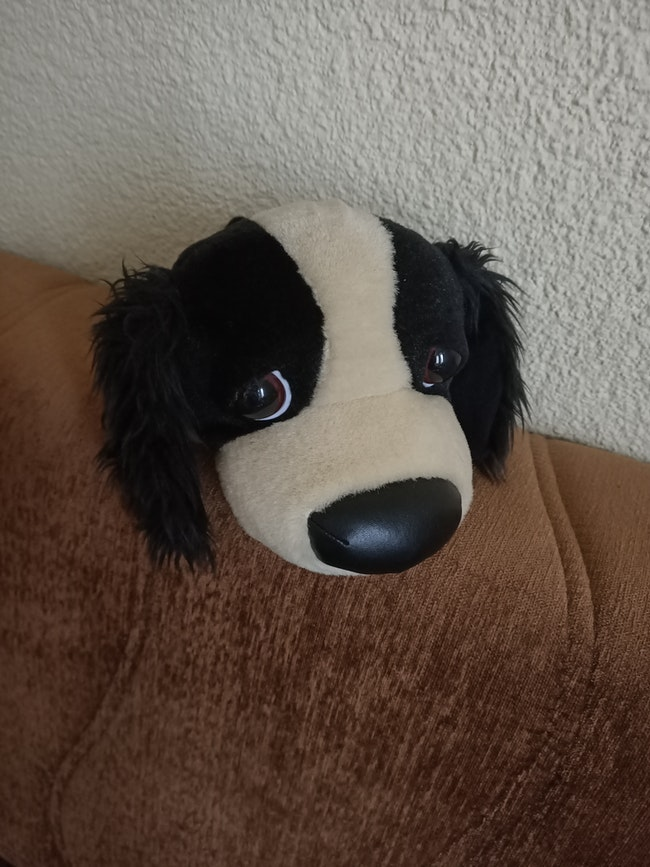 Doudou chien