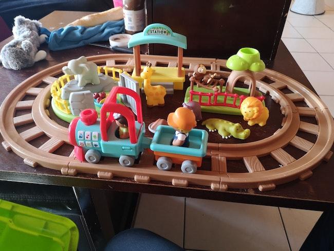 Train savari