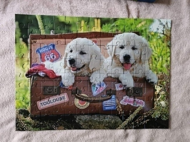 Puzzle chiens 100 pièces