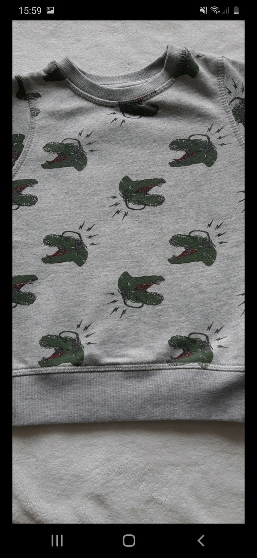 "Pull ""crocodiles"" 3 ans"