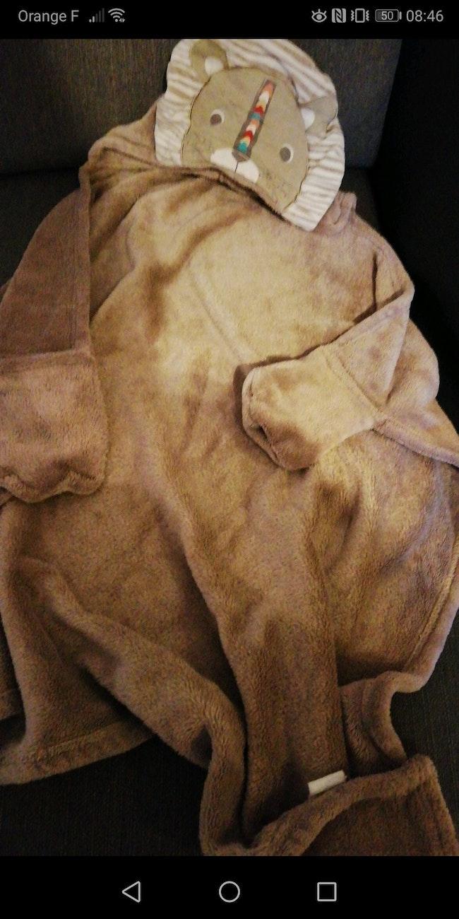Belle couverture lion