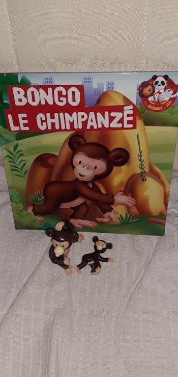 Les animaux du zoo le chimpanzé