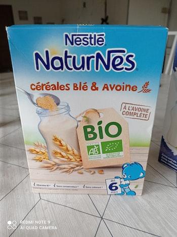 Lait en poudre céréales blé et avoine