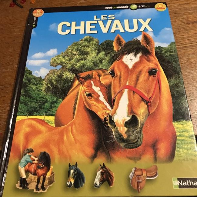 Livre sur les chevaux