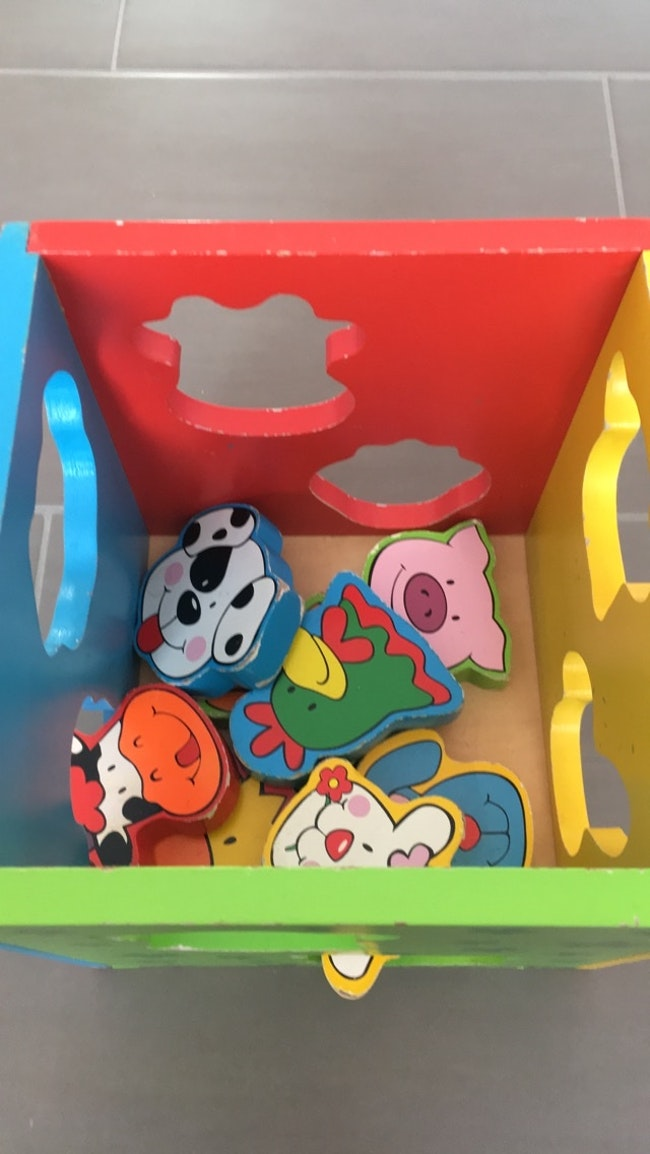 Boîte à animaux avec les formes