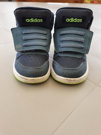 Adidas Hoops Mide